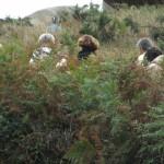 Dans la brousse